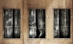_3 Fenster Kopie_s