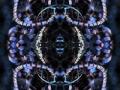 spiegelungen_12.jpg