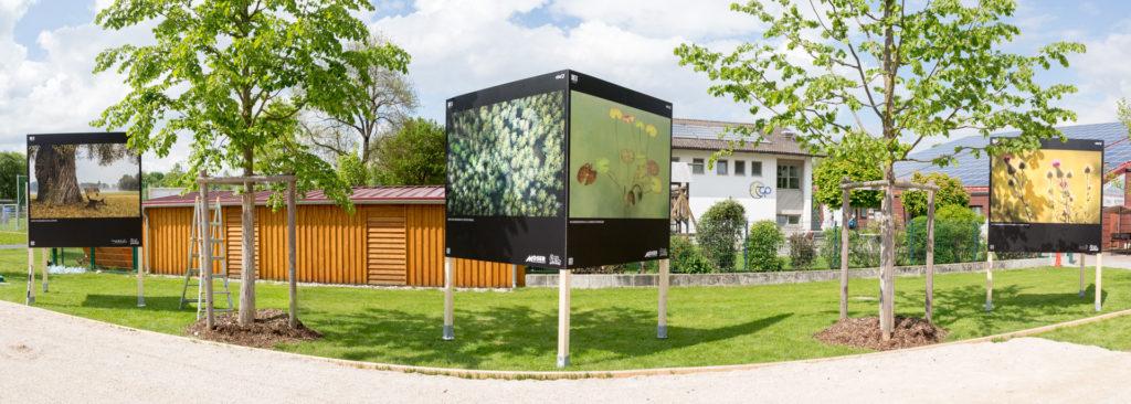"""Natur in Pfaffenhofen – Aufbau der Ausstellung """"Bilderwelten"""""""